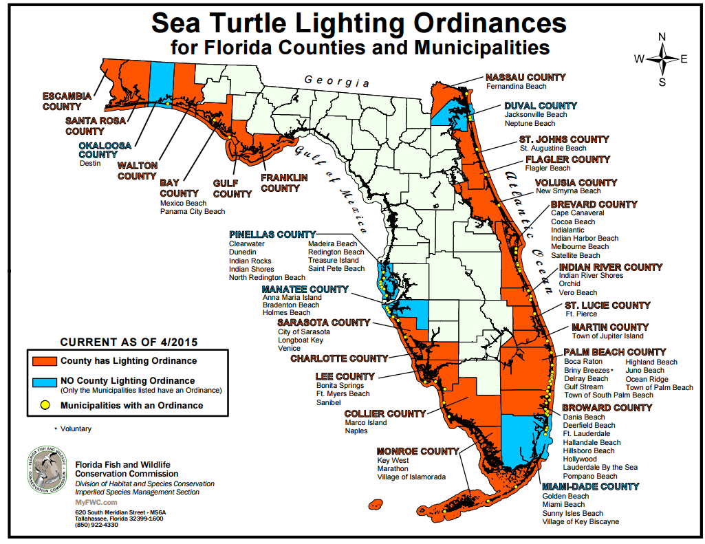Beachfront Lighting: How You Can Help – Sea Turtle Conservancy